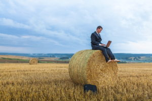 Rural businesses see digital technology as key to growth