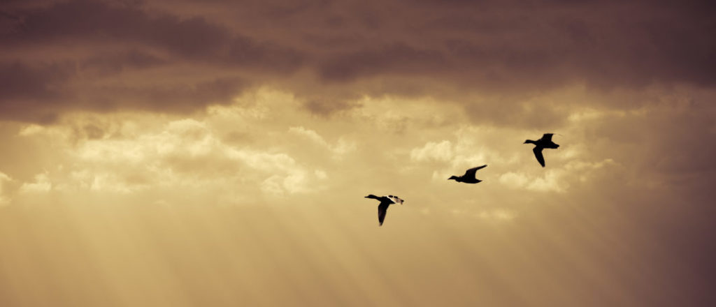 Key considerations for a successful cloud migration